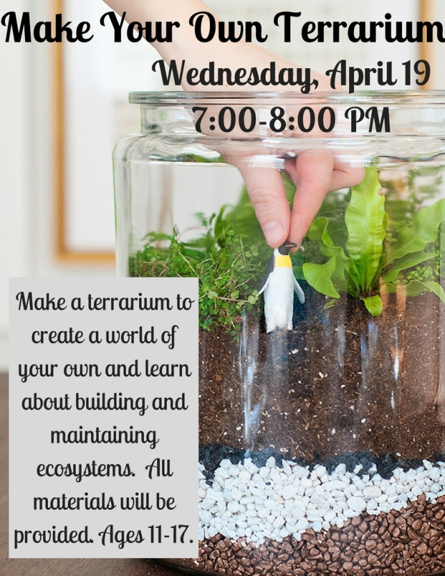 make-your-own-terrarium