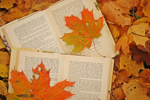 photo-autumn-leaves-maple-books-Favim.com-486374.jpg